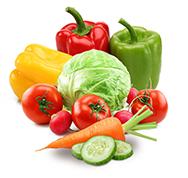 Salatbasis